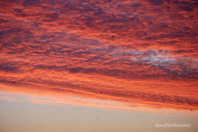 Intensives Morgenrot über Charlottenburg. Wenn ein Tag so vielversprechend beginnt ...