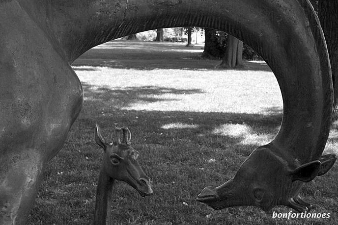 Ich traute meinen Augen nicht: Die Beiden hatten sich gut hinter einem Busch versteckt. Ich war vollkommen überrascht, als auf einmal Mama-Giraffe und Baby-Giraffe nur wenige Meter entfernt von mir aus den Dickicht auftauchten. Ein inniger Moment der Zärtlichkeit, den ich dort beobachten konnte. Es stellte sich dann heraus, dass es sich bei dem Giraffenpaar nicht um Flüchtlinge aus dem Tierpark handelte, sondern um eine witzige Kreation des Bildhauers Hans Hennig. Seit 1977 steht diese annähernd lebensgroße Skulptur auf der Schlossinsel in Köpenick.