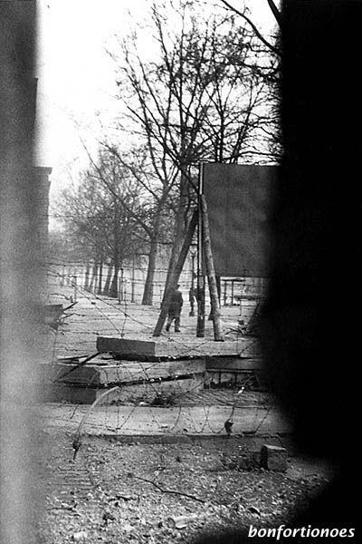 Blick durch die Mauer auf den Sophienfriedhof II