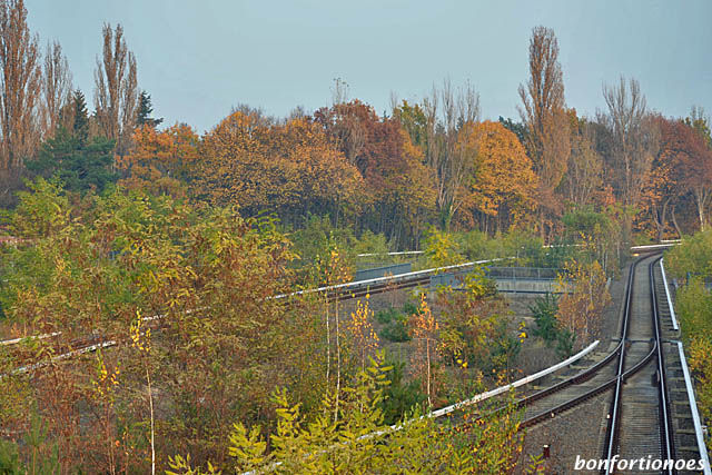 Herbststränge