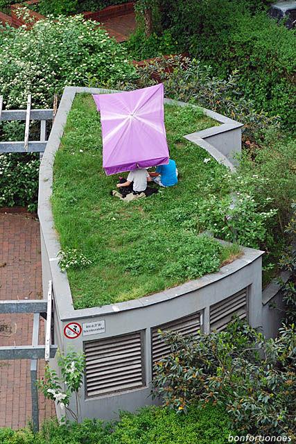 Der Dachgarten (oder l'art de vivre)