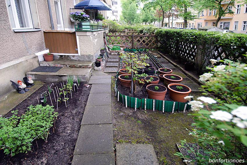 Vorgarten eines Berliner Mietshauses im Frühling